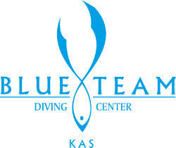 Blue Team Diving